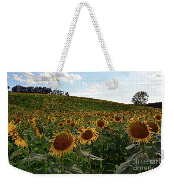 Sunflowers Fields  Weekender Tote Bag
