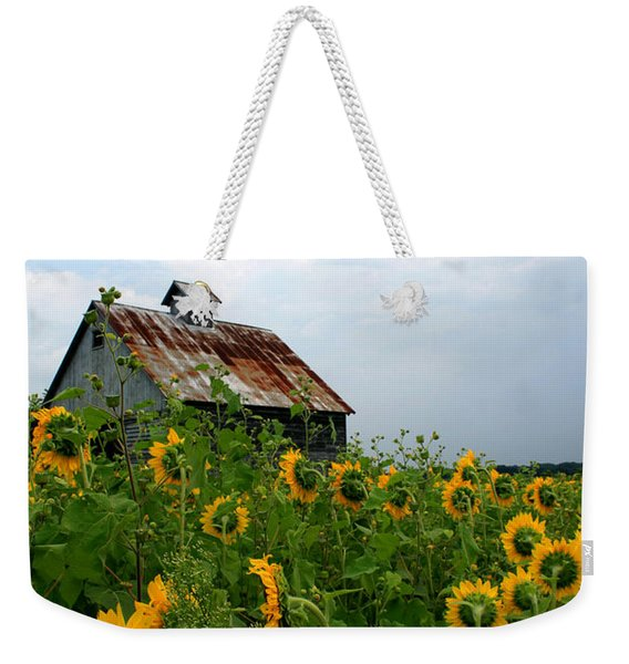 Sunflowers Rt 6 Weekender Tote Bag