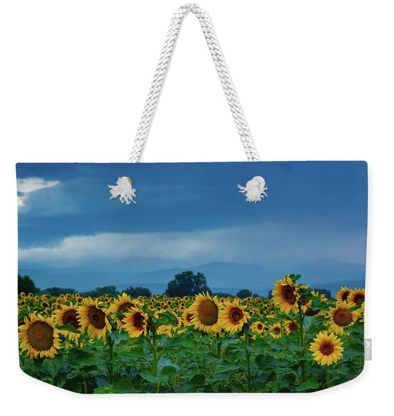 Weekender Tote Bag featuring the photograph Sunflowers Under A Stormy Sky by John De Bord