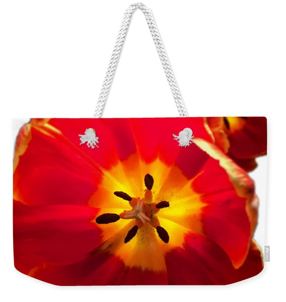 Sunkissed Tulips Weekender Tote Bag