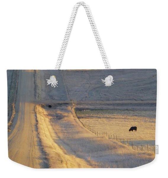 Weekender Tote Bag featuring the photograph Sunlit Road by Cris Fulton