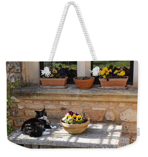 Sunny Cat In Provence Weekender Tote Bag
