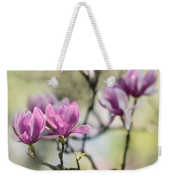 Weekender Tote Bag featuring the photograph Sunny Impression With Pink Magnolias by Jaroslaw Blaminsky