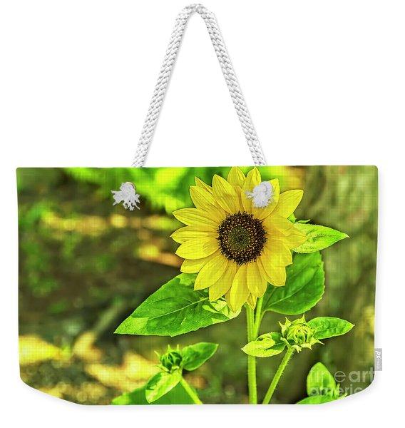 Sunny Weekender Tote Bag