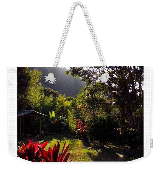 Sunny Yard  From Weekender Tote Bag