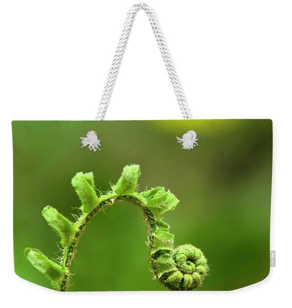 Sunrise Spiral Fern Weekender Tote Bag