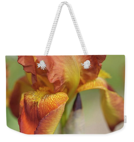 Sunset Blaze Closeup. The Beauty Of Irises Weekender Tote Bag