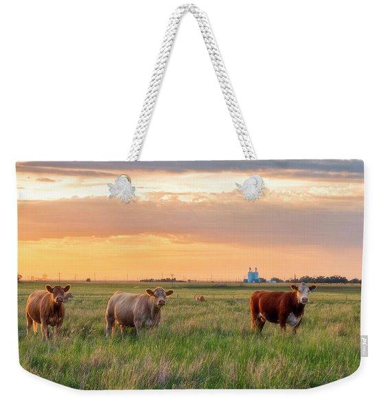 Sunset Cattle Weekender Tote Bag