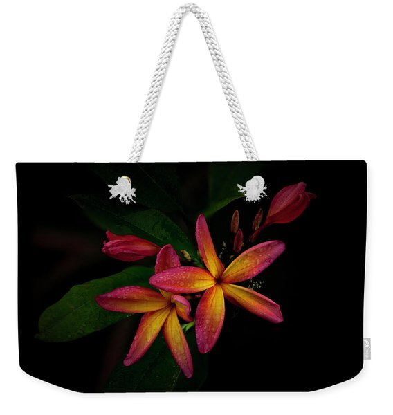 Sunset Plumerias In Bloom #2 Weekender Tote Bag