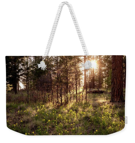 Weekender Tote Bag featuring the photograph Sunshine And Lupine by Mary Lee Dereske