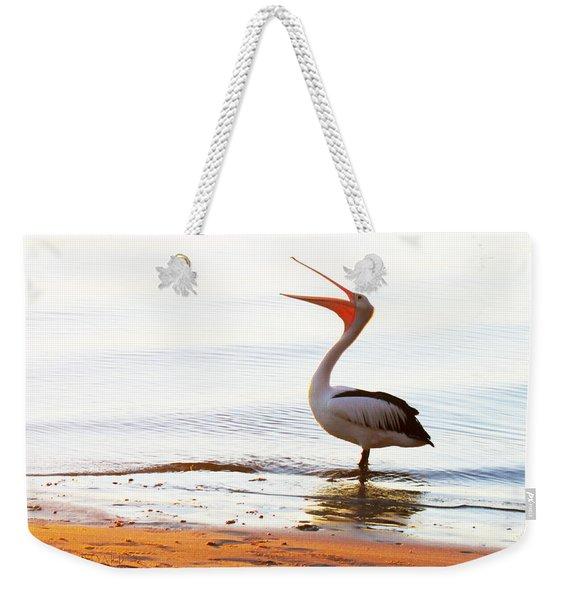 Sunshine Coast Pelican Weekender Tote Bag