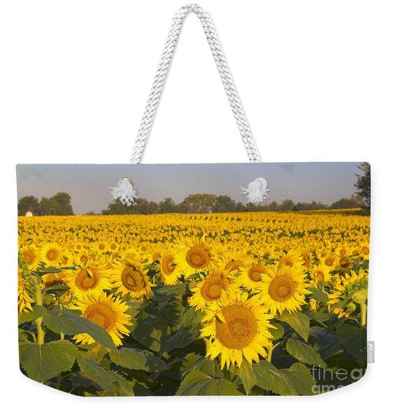 Sunshine Flower Field Weekender Tote Bag