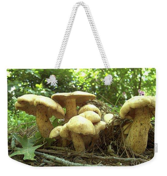 Surprise Fungi In Gibbs Garden Weekender Tote Bag