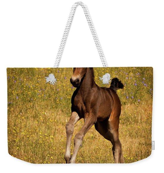 Surprise Party Weekender Tote Bag