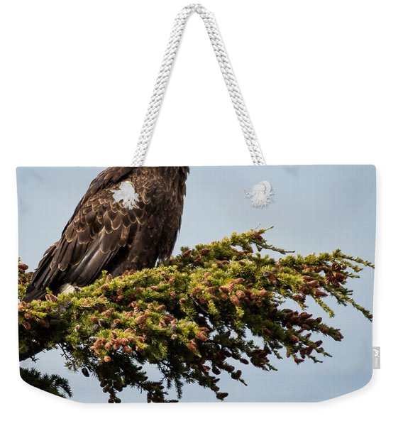 Weekender Tote Bag featuring the photograph Surveying The Treeline by Tim Newton