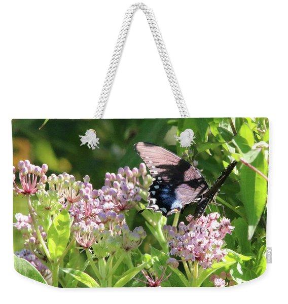 Female American Swallowtail Papilio Polyxenes Weekender Tote Bag