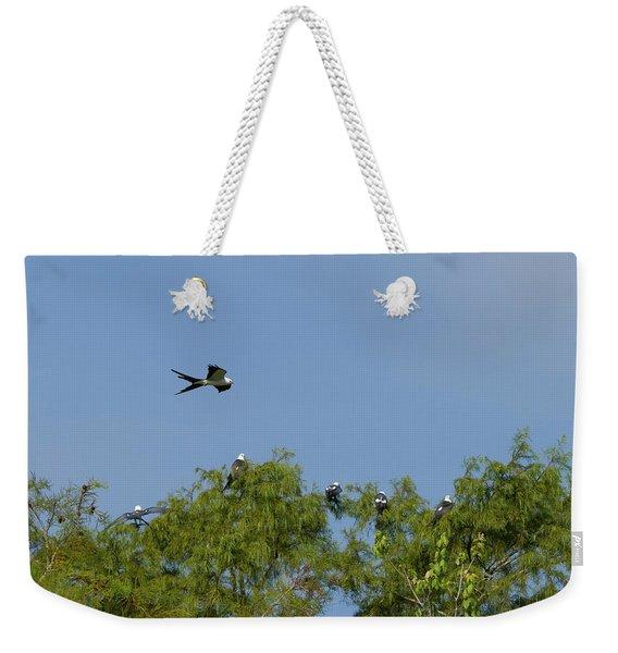 Swallow-tailed Kite Flyover Weekender Tote Bag