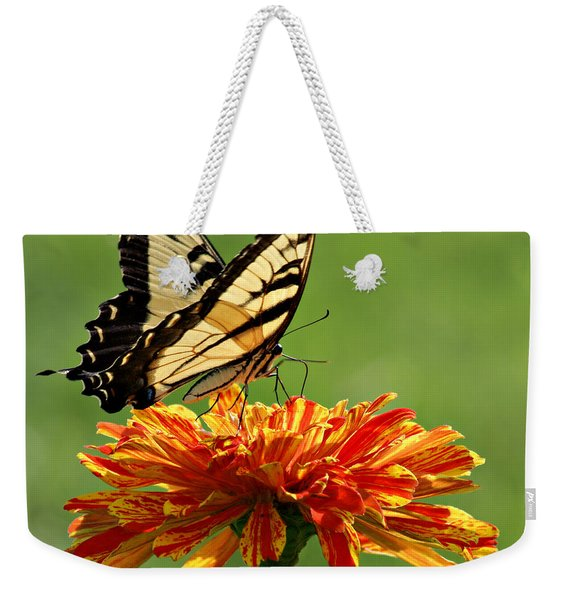 Swallowtail Butterfly - Zinnia Weekender Tote Bag
