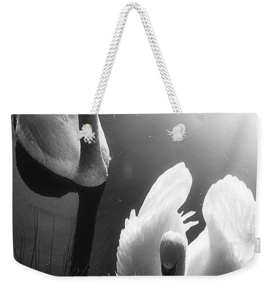 Swan Lake In Winter -  Kingsbury Nature Weekender Tote Bag