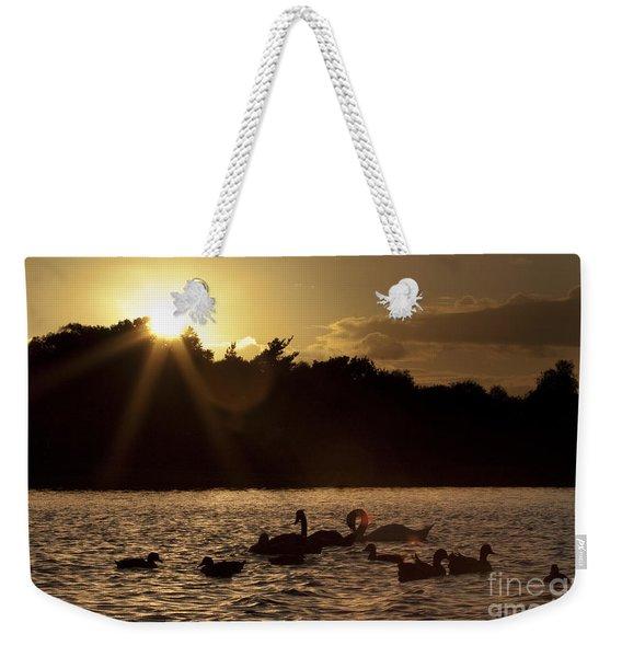 Swans And Ducks Weekender Tote Bag