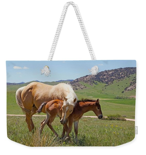 Sweet Comfort Weekender Tote Bag