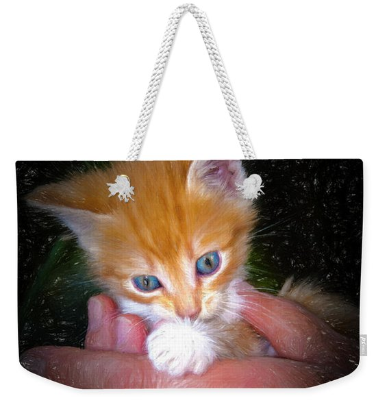 Sweet Kitten  Weekender Tote Bag