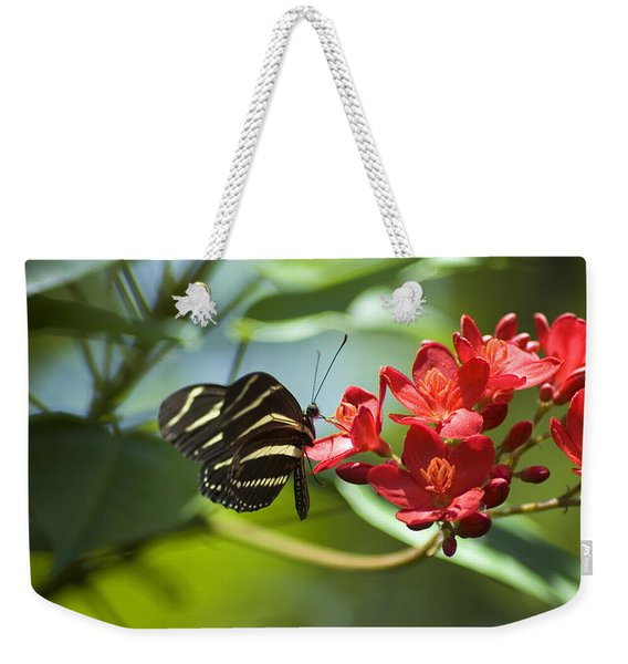 Weekender Tote Bag featuring the photograph Sweet Nectar by Carolyn Marshall
