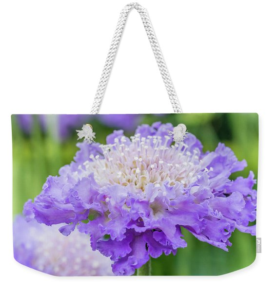 Weekender Tote Bag featuring the photograph Sweet Petal by Nick Bywater