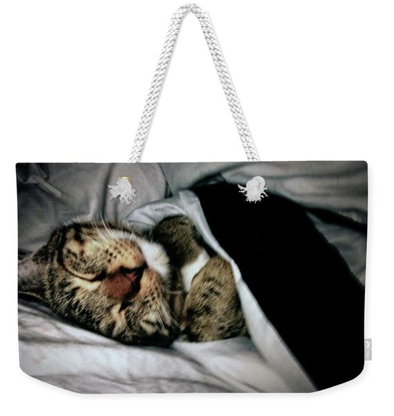 Weekender Tote Bag featuring the photograph Sweet Simba Photo A8117 by Mas Art Studio