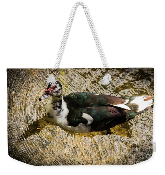 Swimming In Gold Wildlife Art By Kaylyn Franks Weekender Tote Bag