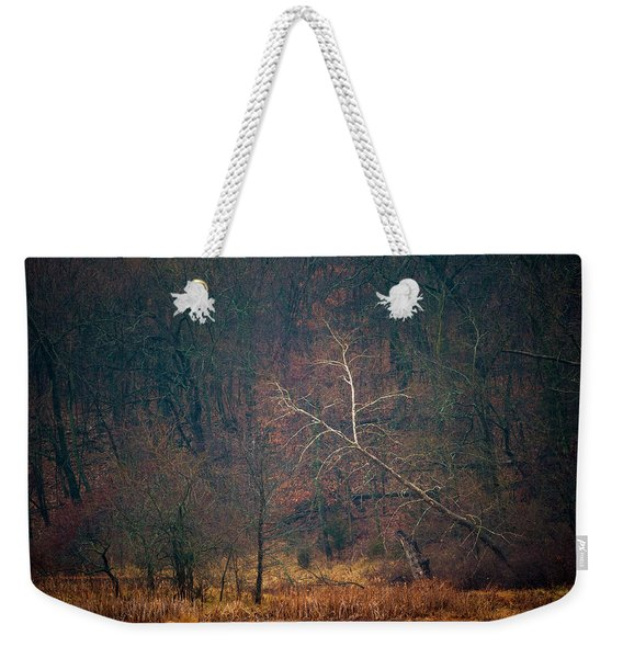 Sycamore Inclination Weekender Tote Bag
