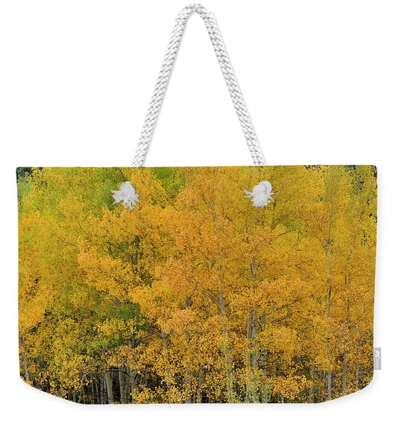 Weekender Tote Bag featuring the photograph Symphony In Gold by Ron Cline