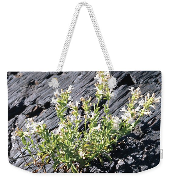 T-107709 Hot Rock Penstemon Weekender Tote Bag