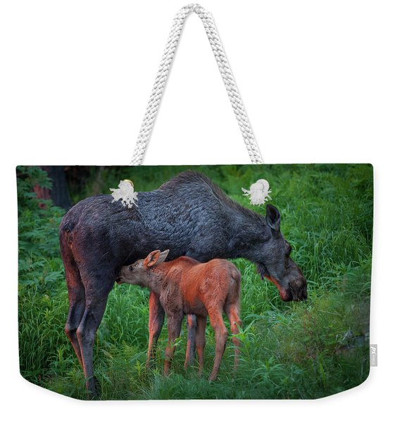 Weekender Tote Bag featuring the photograph Table For Two by Tim Newton