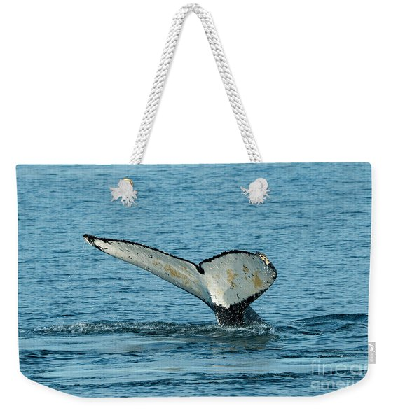 Tail Of The Whale Weekender Tote Bag