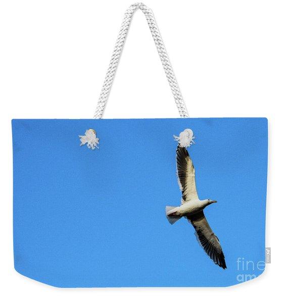 Take Flight Weekender Tote Bag