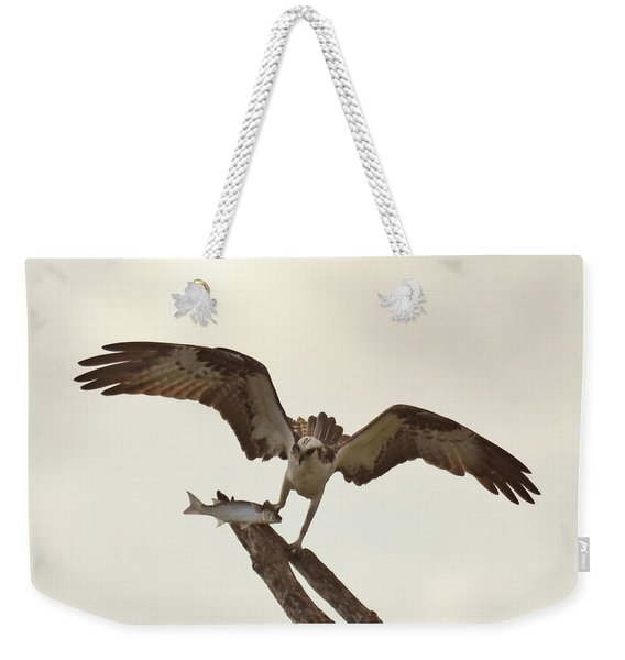 Weekender Tote Bag featuring the photograph Take Out Dinner by Sally Sperry