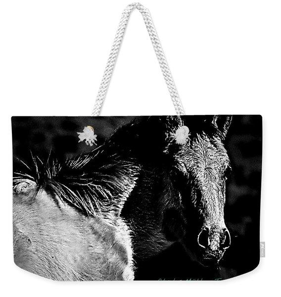 Taos Pony In B-w Weekender Tote Bag