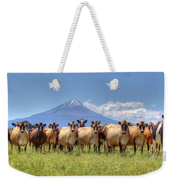 Taranaki Cows Weekender Tote Bag
