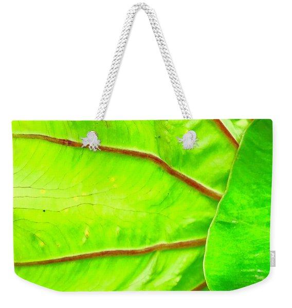 Taro Leaf Close Up In Green Weekender Tote Bag