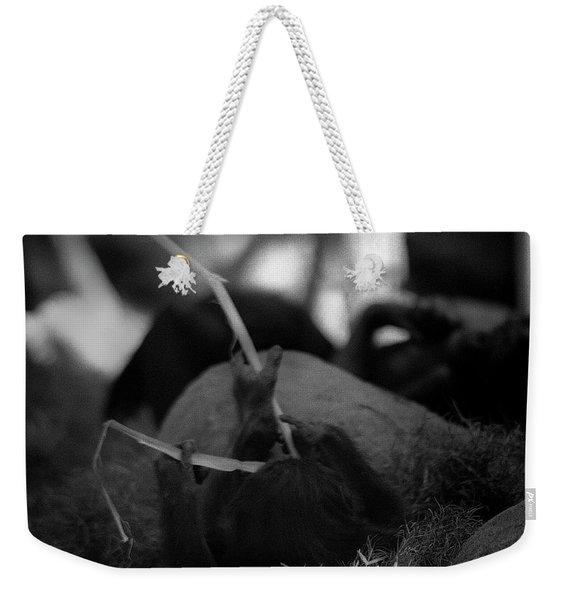Tarry With Us Weekender Tote Bag