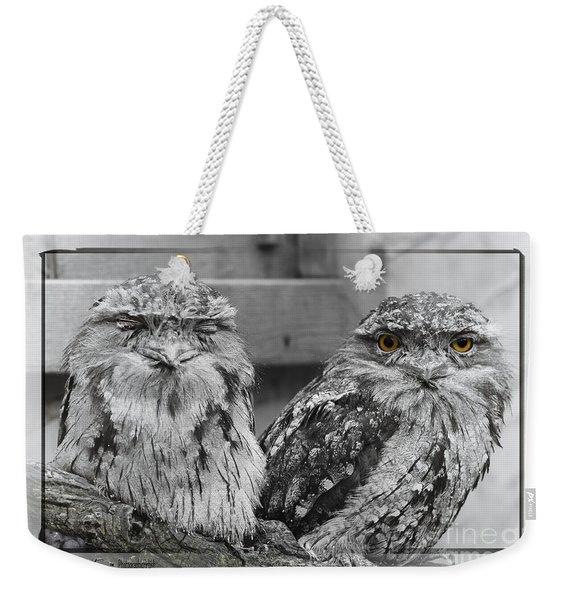 Tawney Frogmouths Weekender Tote Bag