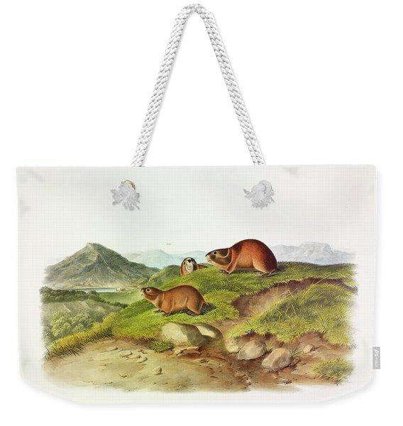 Tawny Leming Weekender Tote Bag