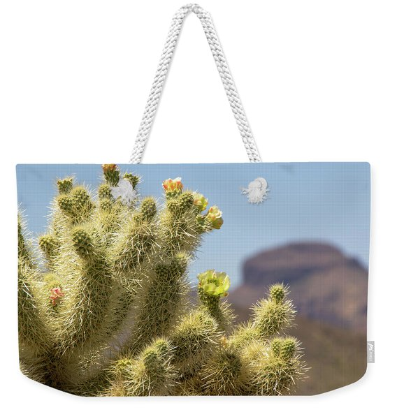 Teddy Bear Cholla Cactus With Flower Weekender Tote Bag