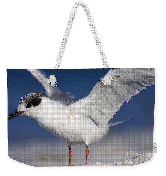 Tern Beach Weekender Tote Bag