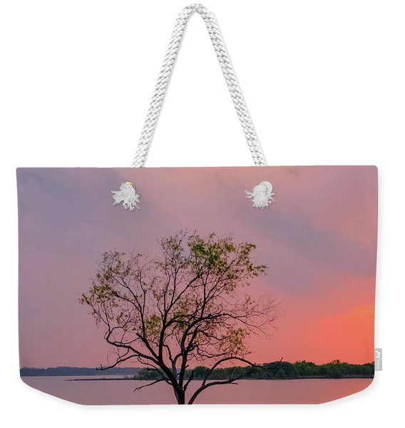 Texas Bluebonnets And Lightning Weekender Tote Bag