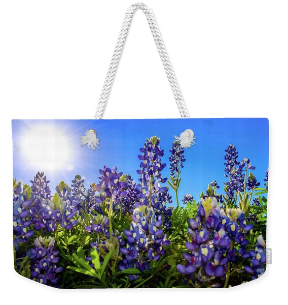 Texas Bluebonnets Backlit II Weekender Tote Bag