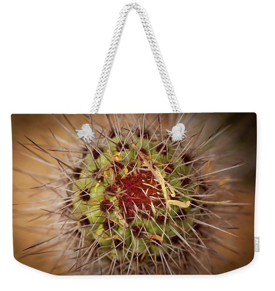 Textures Of Arizona Weekender Tote Bag