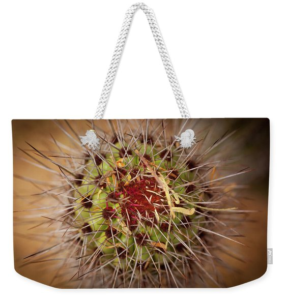 Textures Of Arizona Weekender Tote Bag