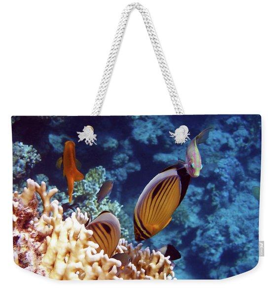 The Best Of The Red Sea Weekender Tote Bag
